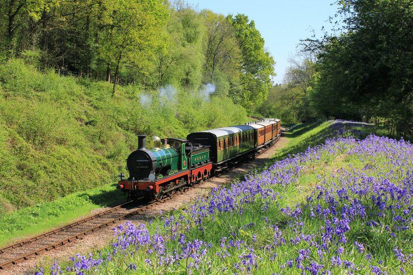 Steam train receptions