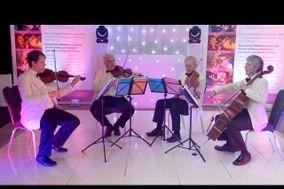 Phoenix String Quartet