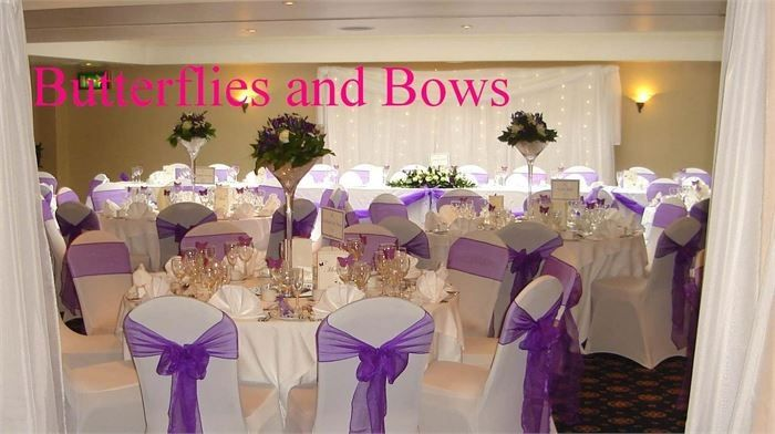 Decorative Hire Butterflies and Bows Decorative Hire 18