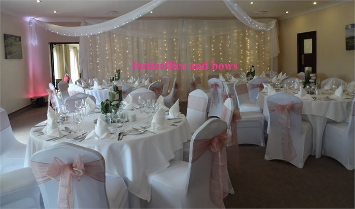 Decorative Hire Butterflies and Bows Decorative Hire 17
