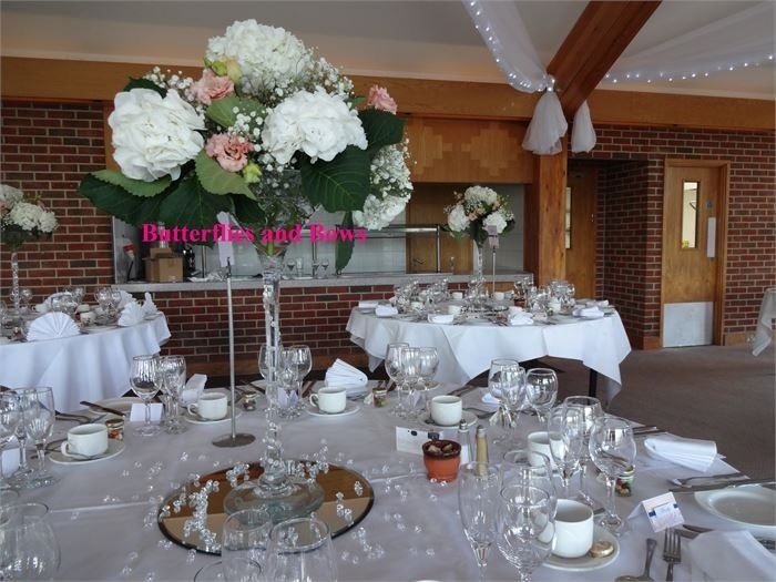 Decorative Hire Butterflies and Bows Decorative Hire 16