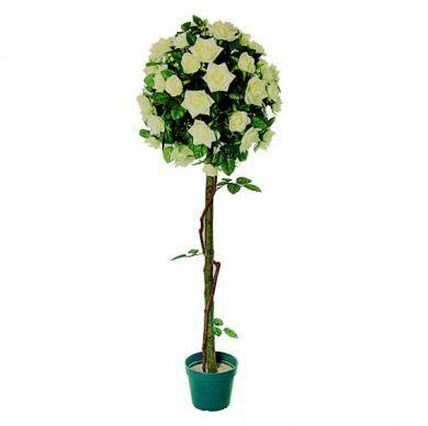 rose tree 4ft 4 105220