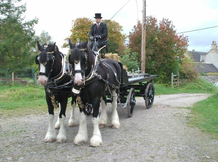 Country wedding with carriage