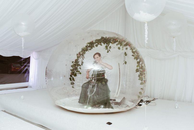 Wedding violinist reception