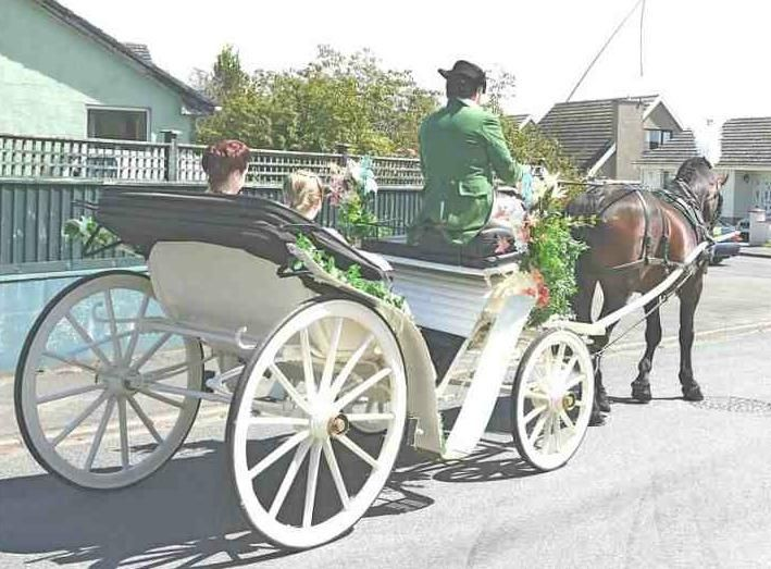 Cleveland Bay with Victoria Carriage