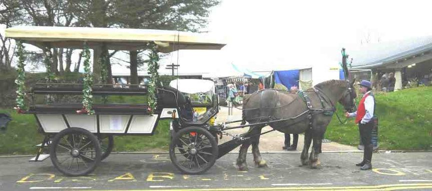 Breton with Wagonette