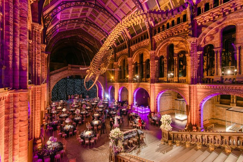 The Natural History Museum 27