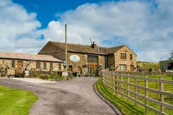 The Wellbeing Farm 14