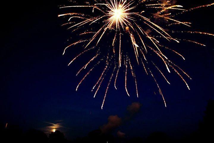 Fireworks Pyrotastic Fireworks 21
