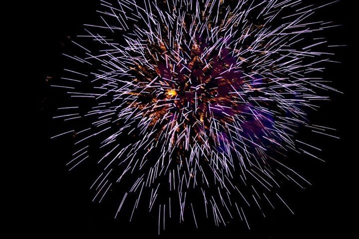 Fireworks Pyrotastic Fireworks 22