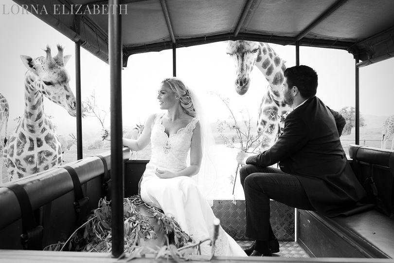 Private wedding safari