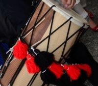 Dhol and Entertainment