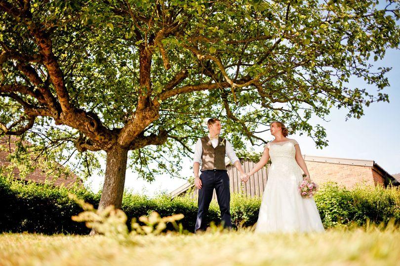 Apple Tree - Kent Life