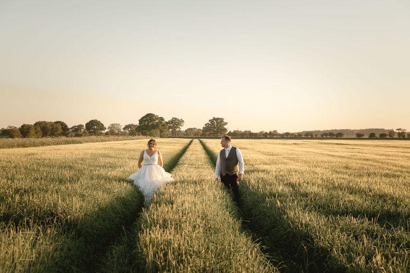 Summer evening fields