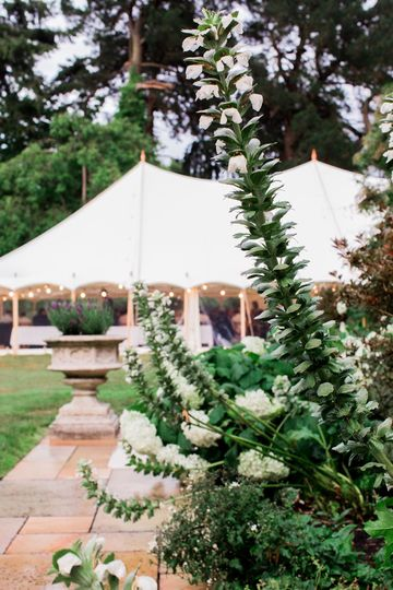 Marquee Hire Boutique Marquees Ltd 14