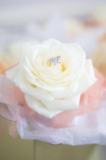 Pretty rose detail
