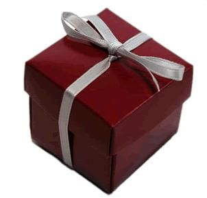 Favour Box With lid   Burgundy Pack of 10