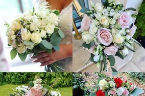 Amore Flowers
