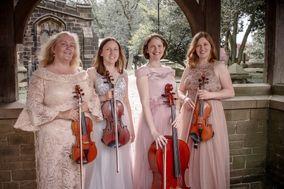 The Fern Quartet