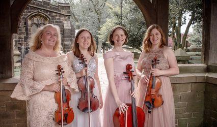 The Fern Quartet 1