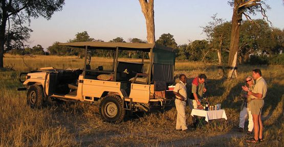 Safari Weddings and Honeymoons