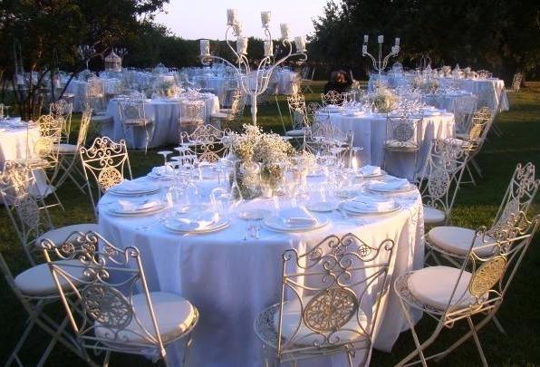 Reception in the garden