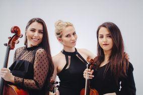 Solas Strings
