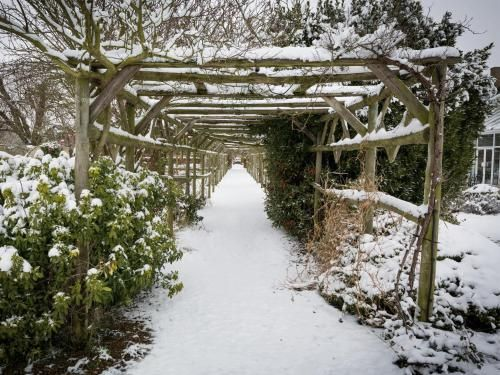 Our Beautiful Gardens in snow