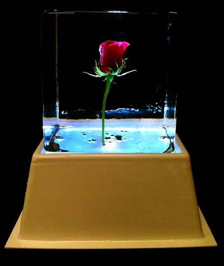 Rose in ice (table centre)
