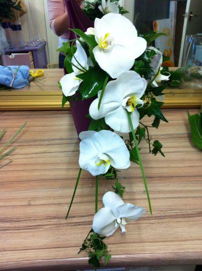 Phalaenopsis Orchid Bouquet