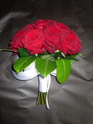Red Rose Tied