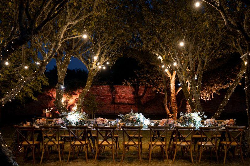Dinner under the trees