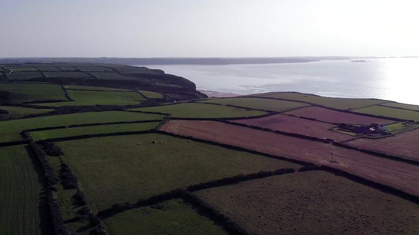 Coastal Fields