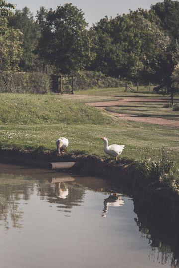 Stokes Farm Barn 27