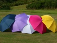 Wide Range of Brolly Colours