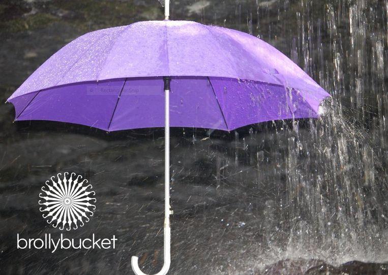 Umbrellas in vibrant colours