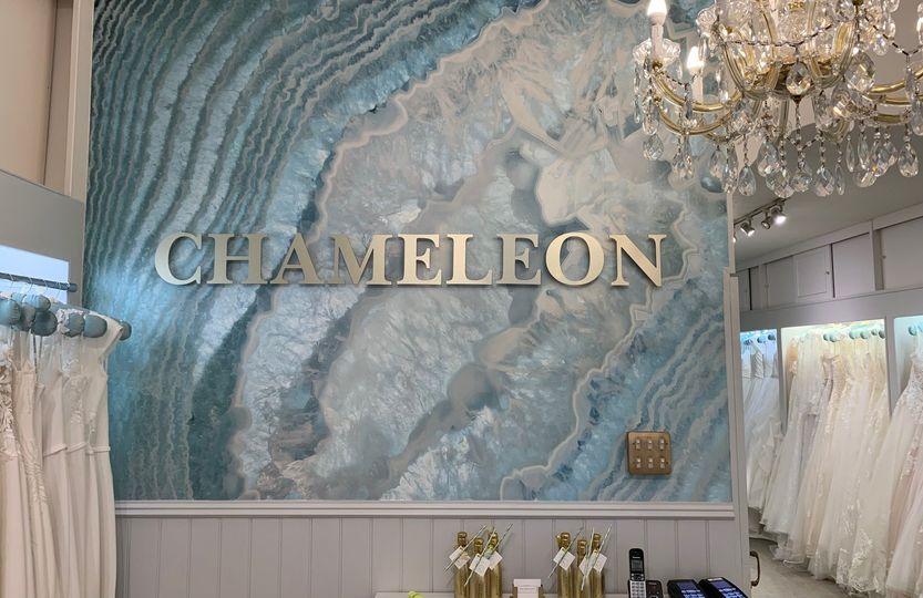 chameleon welcome entrance 4 237907 161287031463923