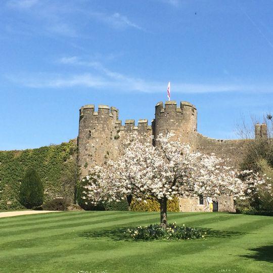 Amberley Castle 48
