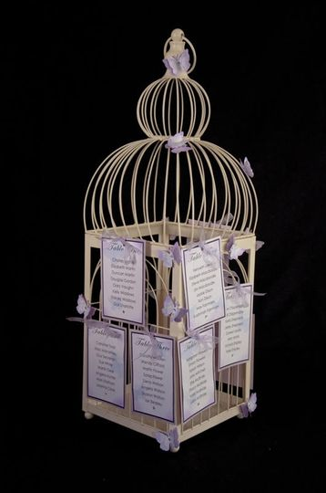 Birdcage plan with butterfly