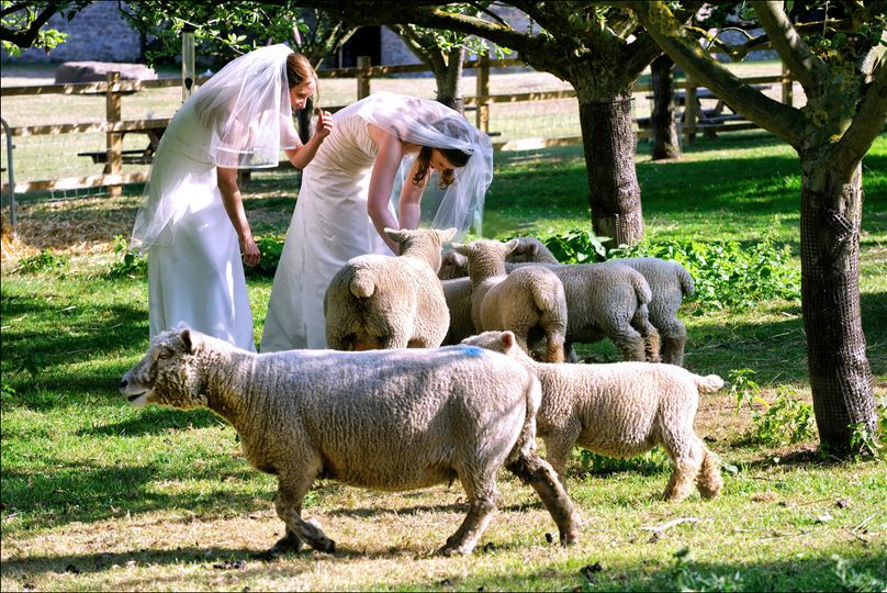 Naturalistic wedding