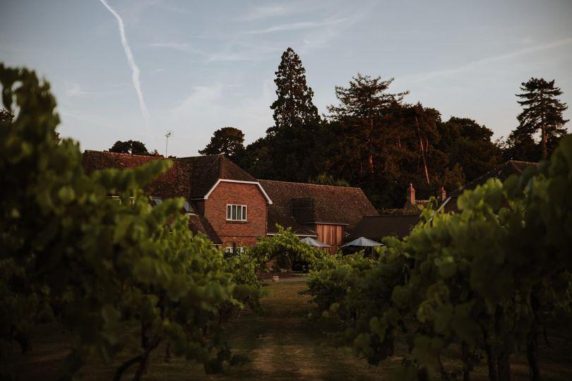 Three Choirs Vineyard Hampshire 21