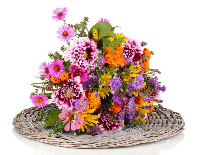 Gorgeous flowers
