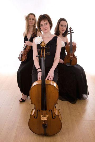Bowfiddle Trio