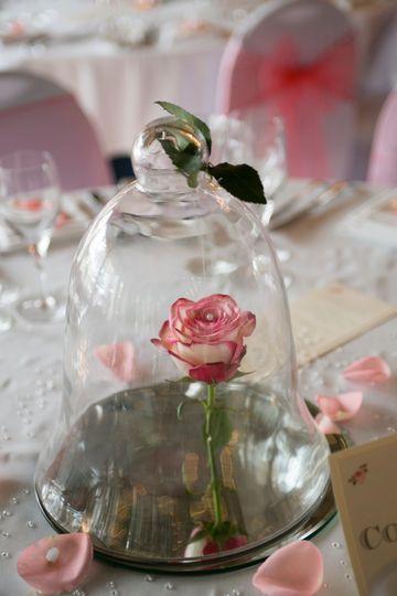 Bell jar rose