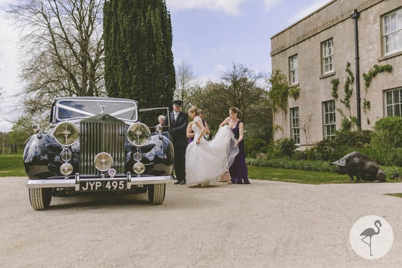 Wedding Car Pig Hotel Bath