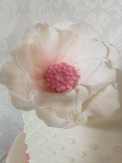Delicate sugarflower