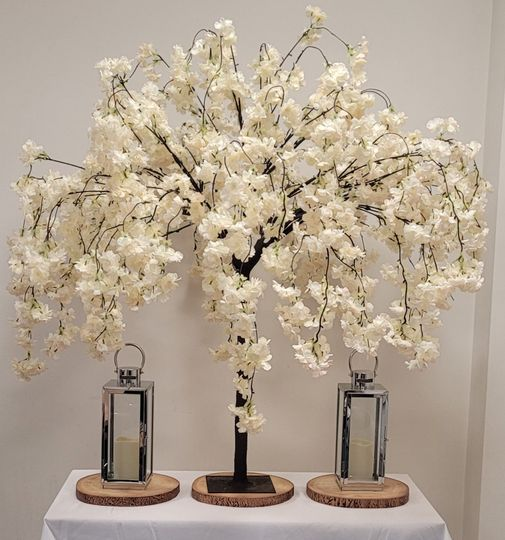 Four-foot blossom trees