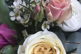 Jasmine & Jerusalem Floristry