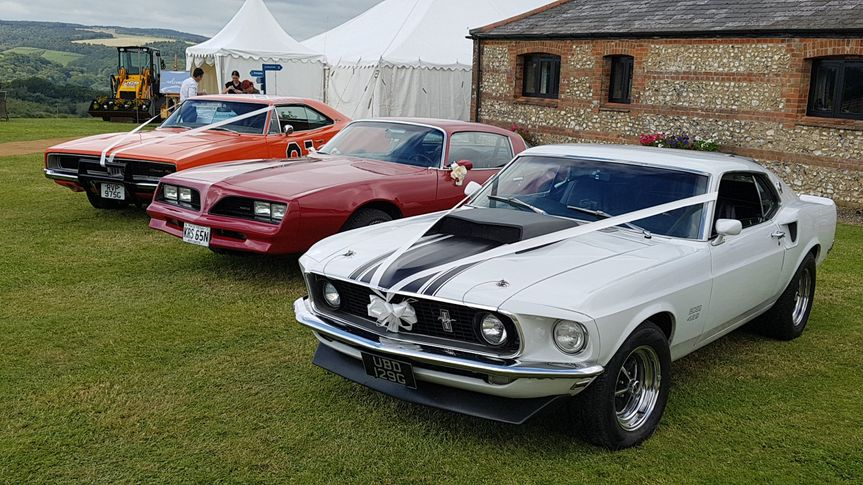 Mustang with friends