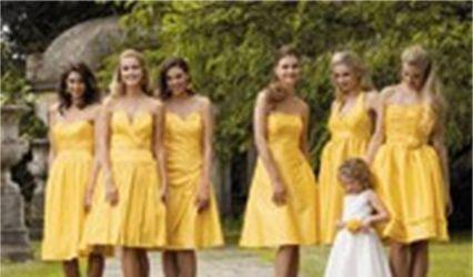 Nessies Dresses